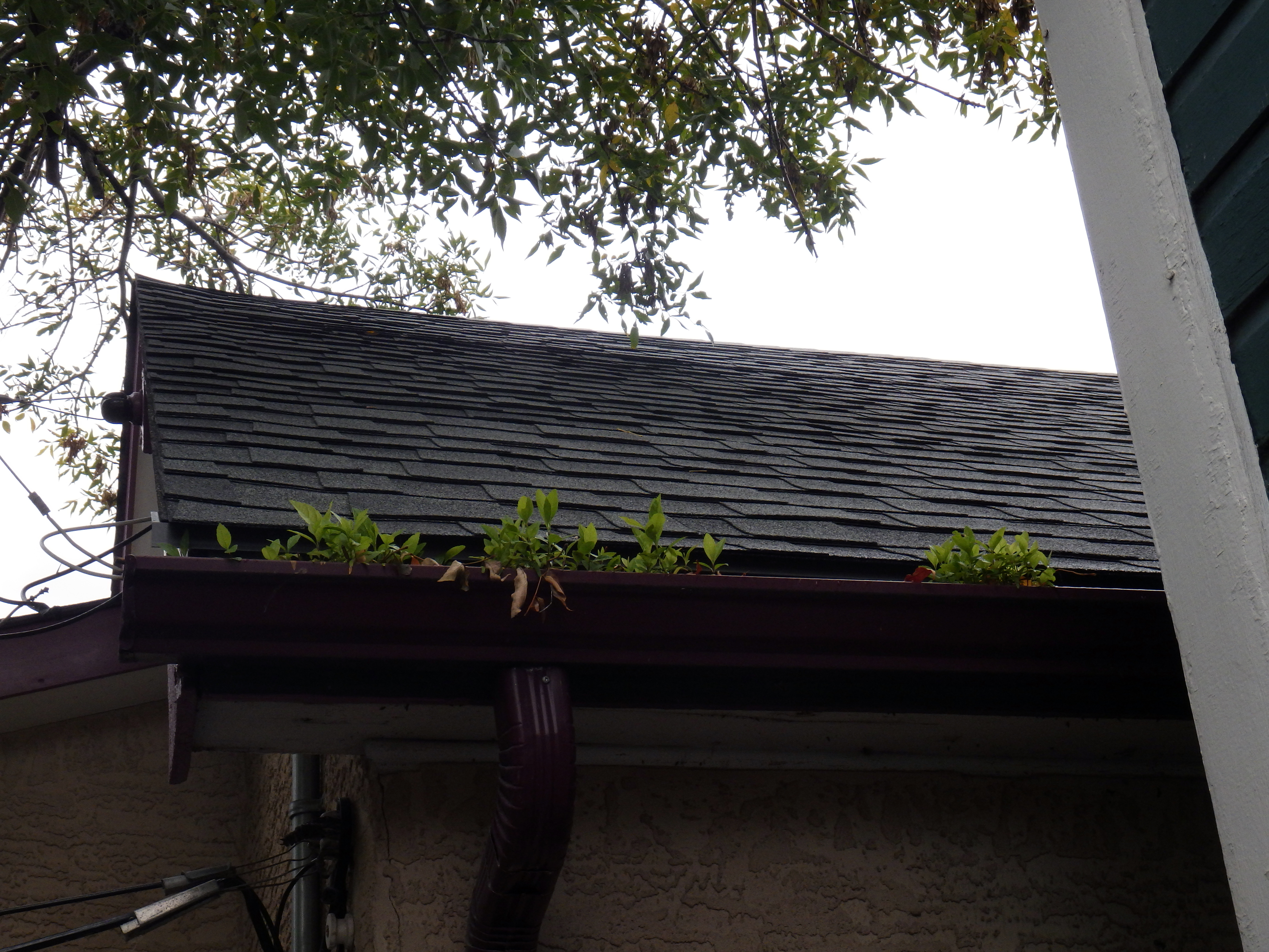 eavestrough maintenance